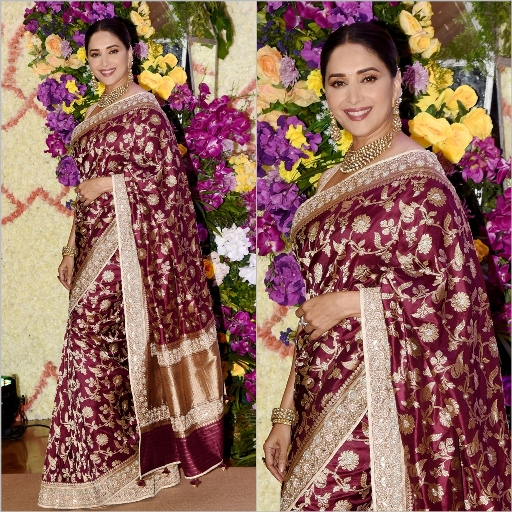 Madhuri Dixit nene wearing a fancy saree